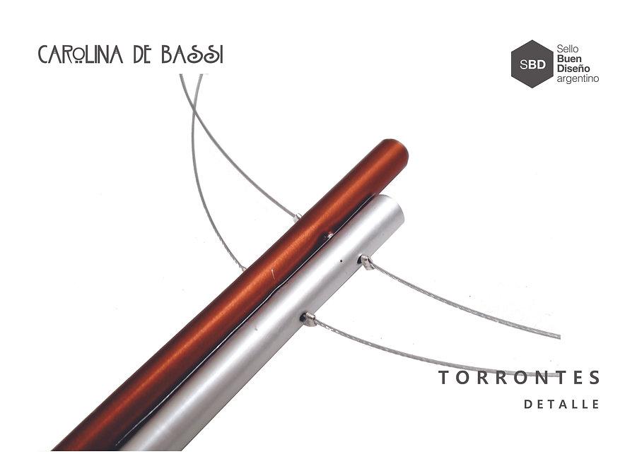TORRONTES COL DET.jpg