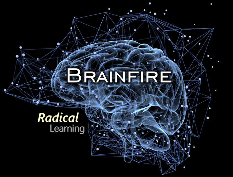 Radical Learning_800x609_Q40.jpg