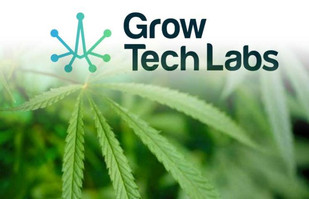 Grow Tech Labs Establishes Dedicated Program for Indigenous Entrepreneurs