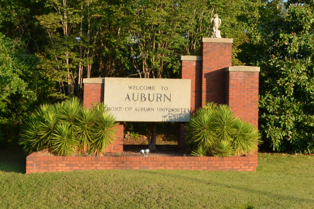 New Homes in Auburn, AL, homes