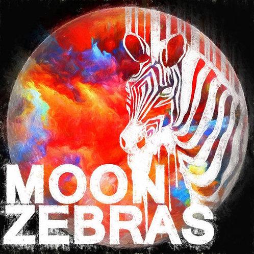 Moon Zebras sticker (set of 4)