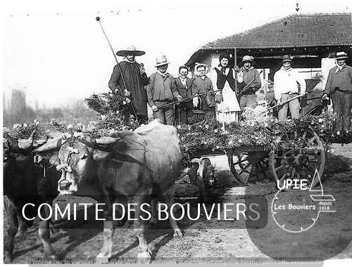 BOUVIERS 1925
