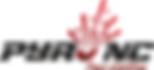 Logo Pyro NC sans cadre.png