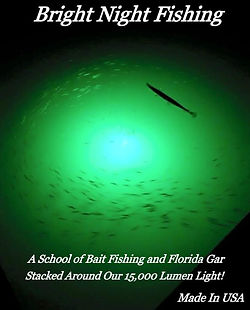 bnf gar and bait fish.jpg