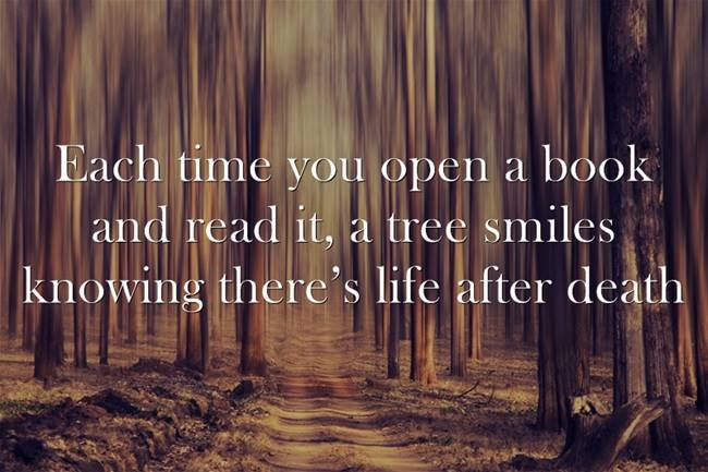 a tree smiles.jpg