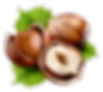 kisspng-hazelnut-nuts-common-hazel-fruit