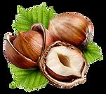 kisspng-hazelnut-nuts-common-hazel-fruit