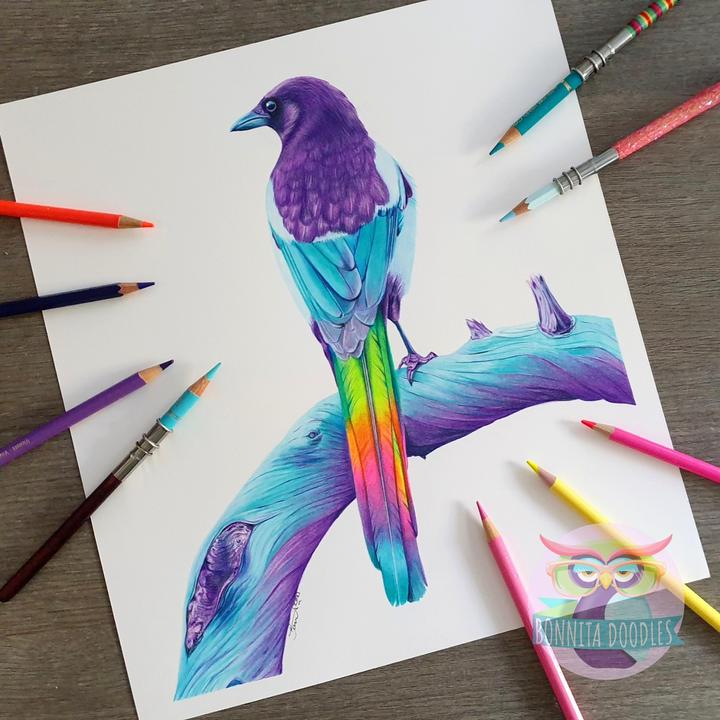 Saphite_rainbow_magpie_BonnitaDoodles