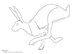 Hare line work bonnita doodles.jpg