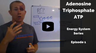 ATP: an introduction to energy