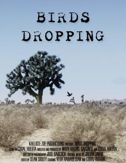 Birds Dropping