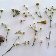 Flower_girl ©minicreativity.jpg