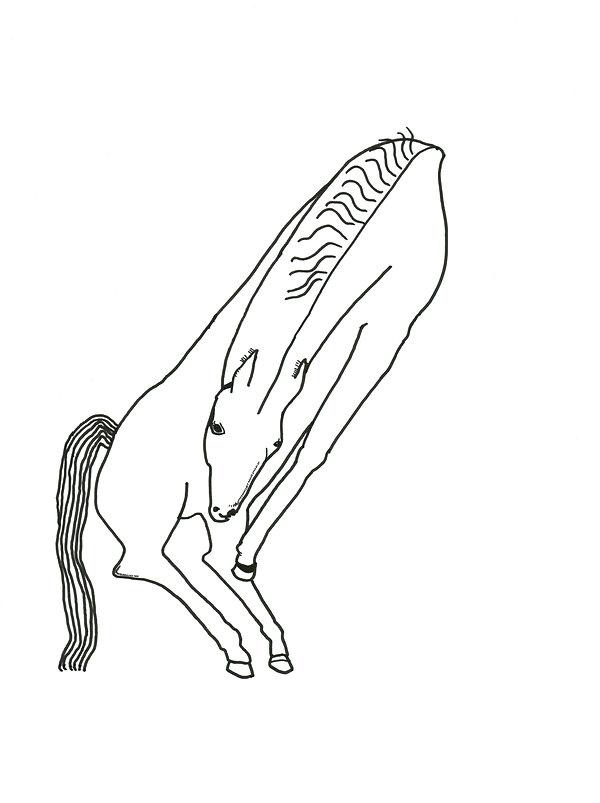 3.11.19sidehorse.jpg
