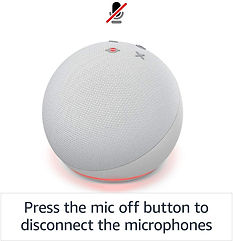 Echo Dot 4th Gen Mic.jpg