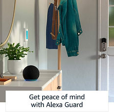 Echo Dot 4th Gen Guard.jpg