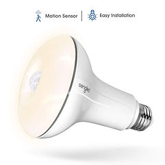 Senled LED Motion Sensor Bulb.jpg