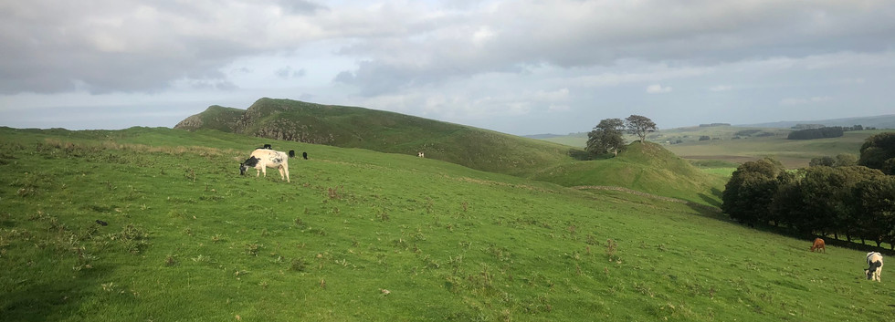 Some of the Hills to Come