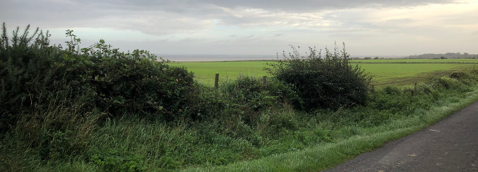 The Barren Flatness of the Solway Firth