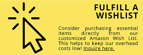 Top Ways to Support Isaiah House amazon.png