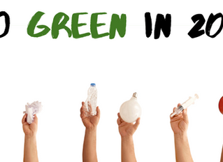 New Year, Green Resolutions