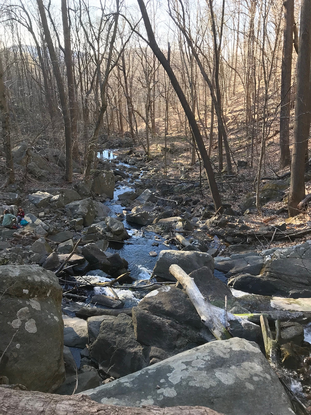Scout Run, a trout-producing tributary to the Musconetcong River in Holland Township, Hunterdon County, had its water quality standards raised to protect its fish habitat as part of a recent NJDEP rule.