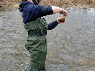Microplastics in the Watershed