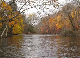 Press Release: New Jersey Conservation Organizations Partner on Continued Clean Water Efforts