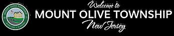 Mount Olive Township logo.png