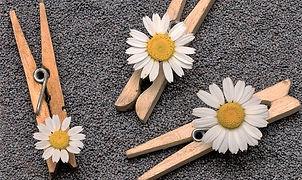 Pregador de roupa de madeira com flor