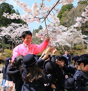 桜満開プロジェクト