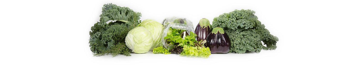 Veggies-banner.jpg
