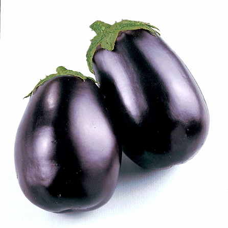 eggplant_black_beauty__89095.1362184425.