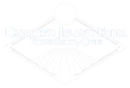 Diamond_Island_Logo-WIP-v2wht copy.png