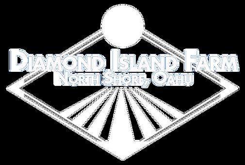 Diamond_Island_Logo-WIP-v2wht copy.png