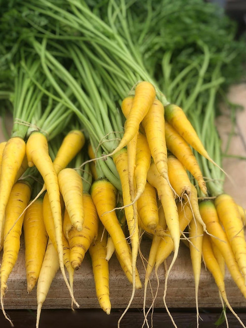 Beasley Farms Yellowstone Carrot with tops