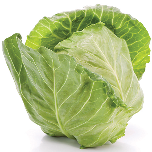cabbage_commodity-page.png