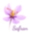 Safran-couleur-titre.png