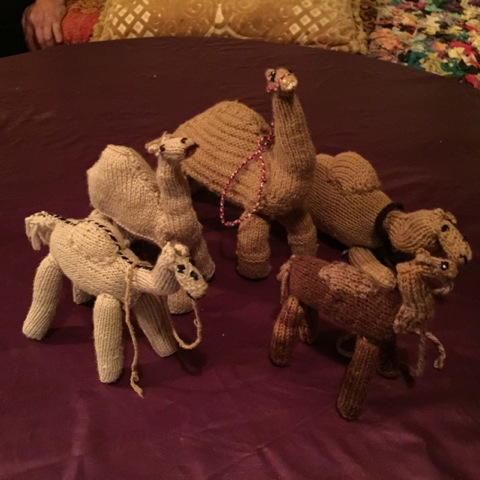 knitted camels
