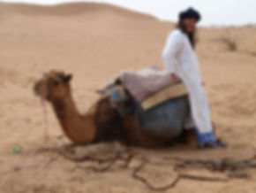 Daoud with his camel out on the dunes