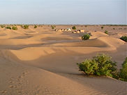 Overnight Camping trips from Dar Sidi Bounou