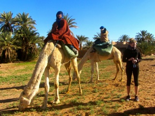 Camel Treks from Dar Sidi Bounou