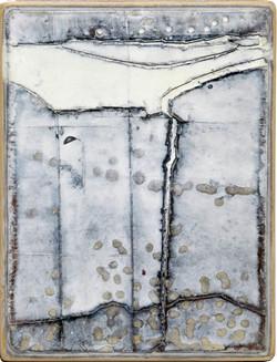 Gerd Kanz. Pflanzenwelten