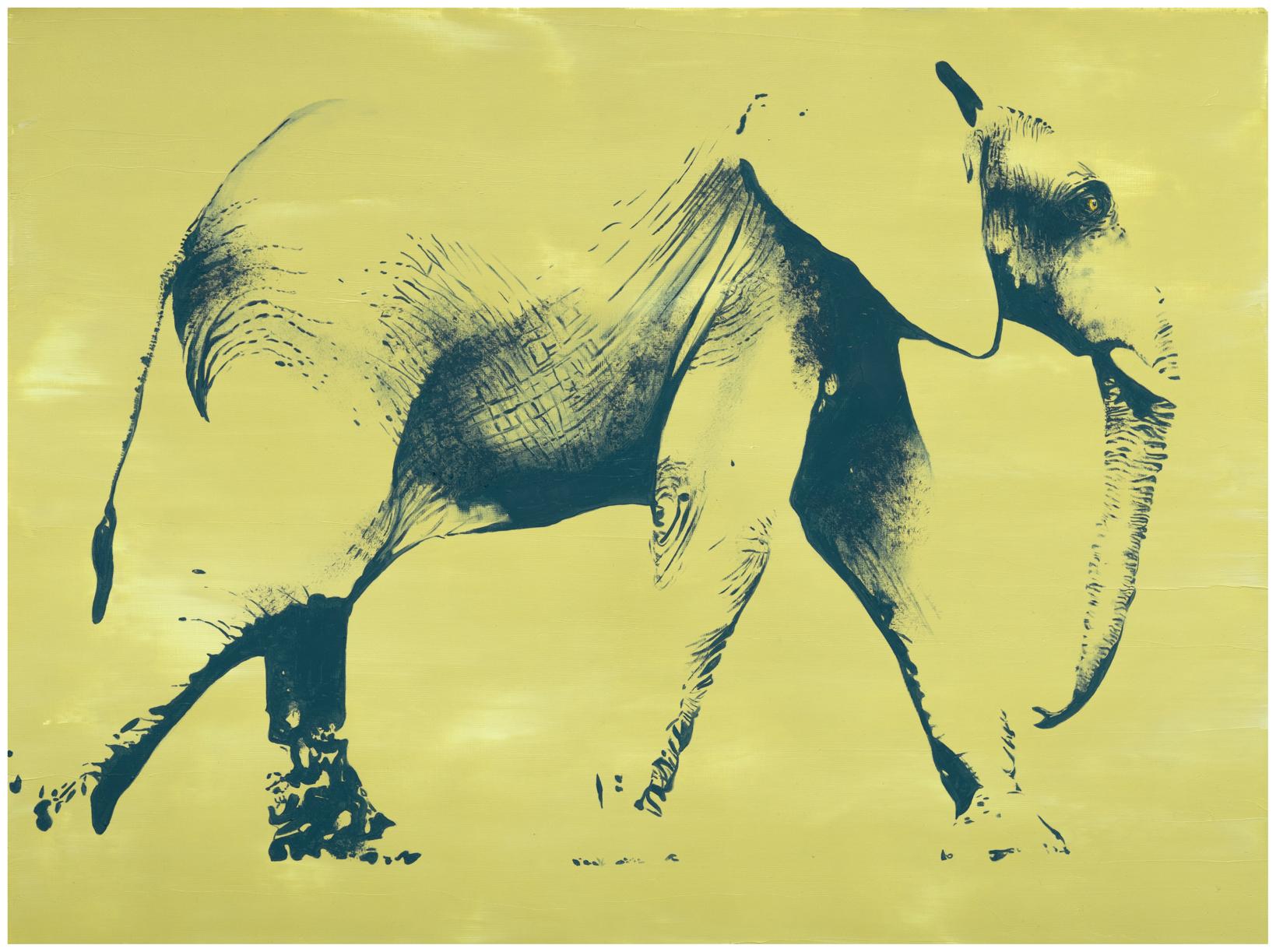 Lezzueck Coosemans_Elefant