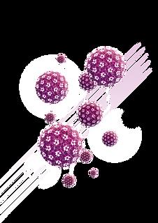 virus-composicion_02.png