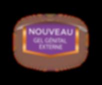 logo nouveau GGE.png