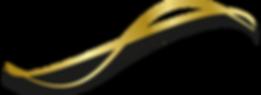 lazo negro 2659x966.png