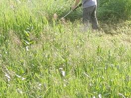 Farm Clean up Continues