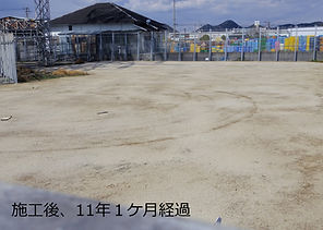 姫路11年1か月 2.jpg