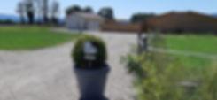 Garde Chat Genève | Pension Chat Du Petit Paradis | France.jpg