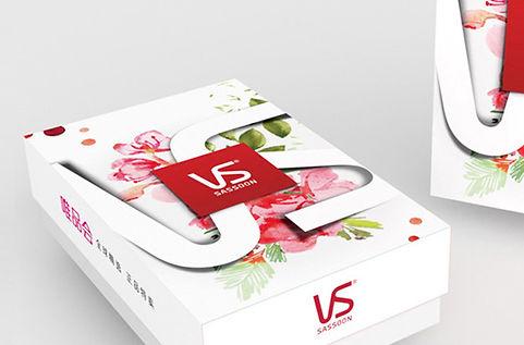VS PromotionPackage Design.jpg
